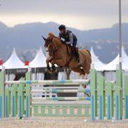 Nuevas Pruebas para caballos jóvenes en el MET