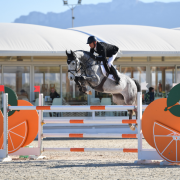 Young Horse finals presented by Absolute Horses kick-start the second week of Spring MET 2018