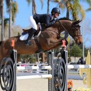 Jaffar de Bourguignon mejor caballo en la final de 7 años en Oliva Nova